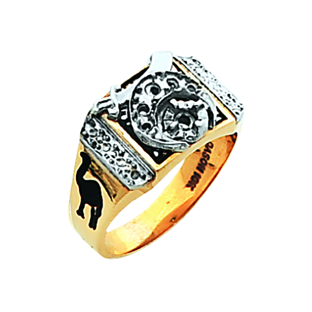 Shriner Ring - Solid Back Mounting in 10K Gold (35)
