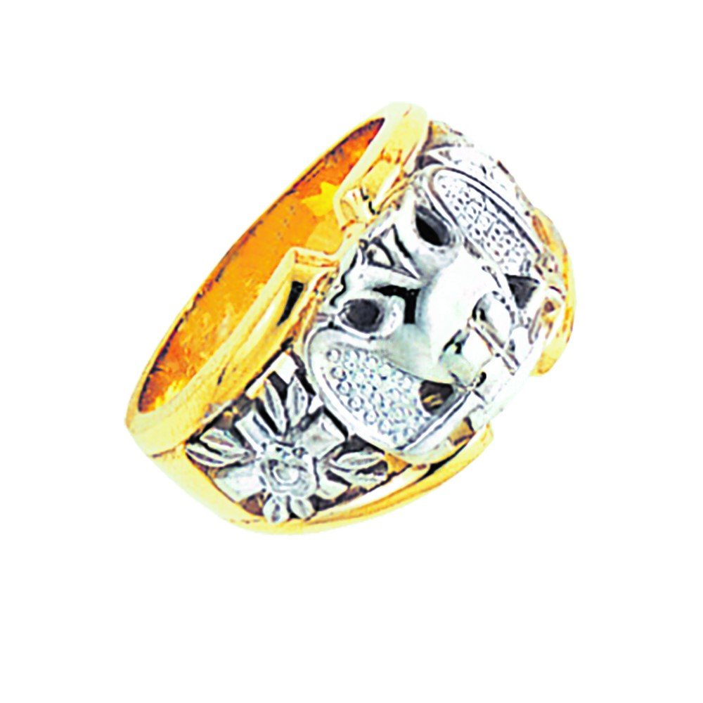 Scottish Rite Ring - Partial Solid Back in 10K Gold (56)