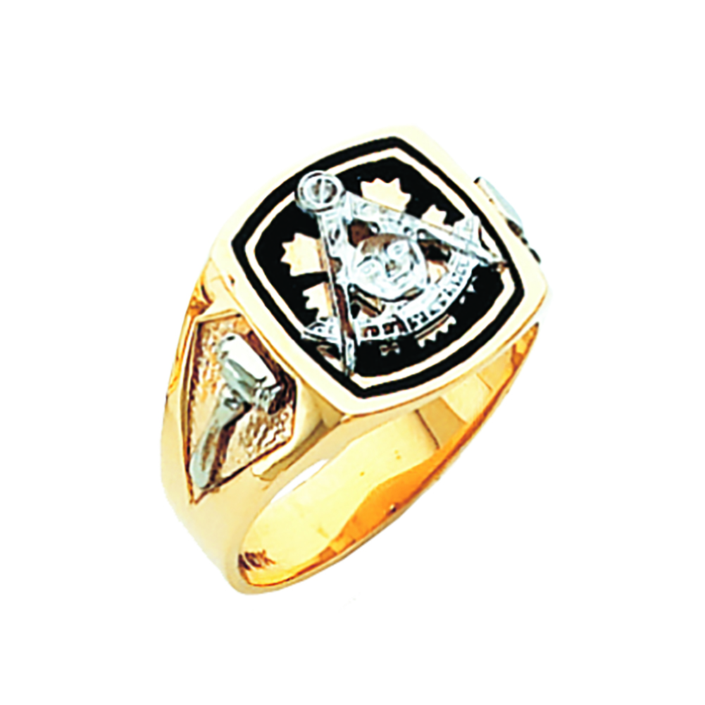 Masonic Past Master Ring - Solid Back in 10K Gold (21)