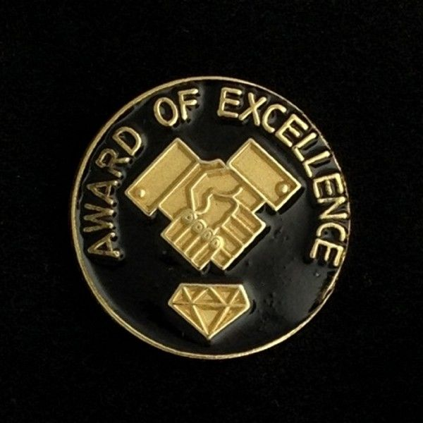 Award of Excellence Lapel Pin New