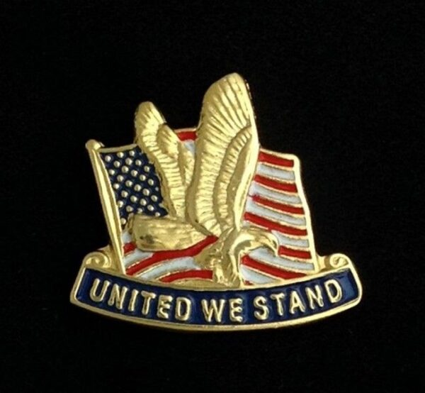 United We Stand US Flag lapel Pin New