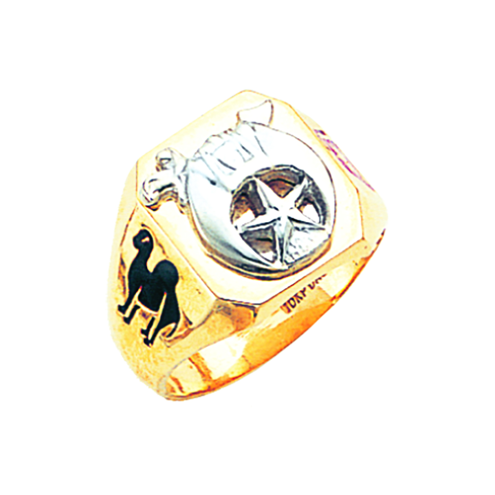 Shriner Ring - Solid Back in 10K Gold (9)
